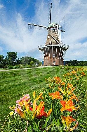 Summer flowers with duch windmill on background