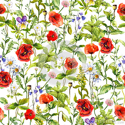 Summer flowers poppies, chamomile, meadow grass. Seamless pattern. Watercolor Stock Photo