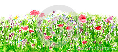 Summer Flowers Watercolor, Border Seamless Pattern