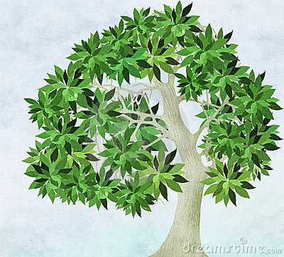 Free Summer For Old Apple Tree Stock Photo - 3468400