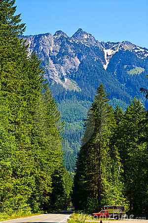 Summer forest road, Mount Baker, Washington
