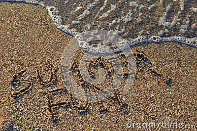 Summer fun by the seashore