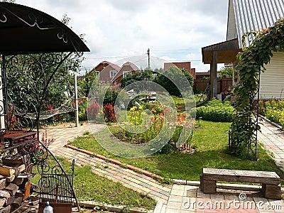 Summer garden with paths