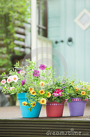 Free Summer Garden Pots Stock Photography - 25344672