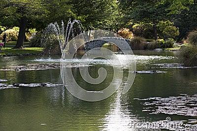 Summer garden is queenstown stock images image 32020344 for Garden design queenstown