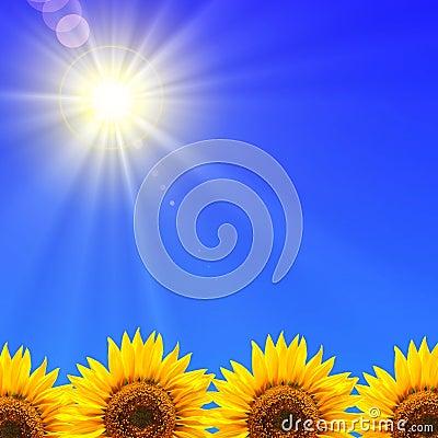 Free Summer Holidays Stock Photo - 13624130