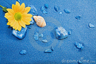 Summer Holidays - blue sands beach and flower