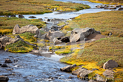 Summer Iceland Landscape with Small River Stream