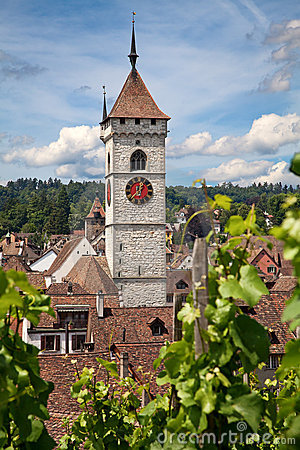 Free Summer In Schaffhausen Royalty Free Stock Images - 19958089