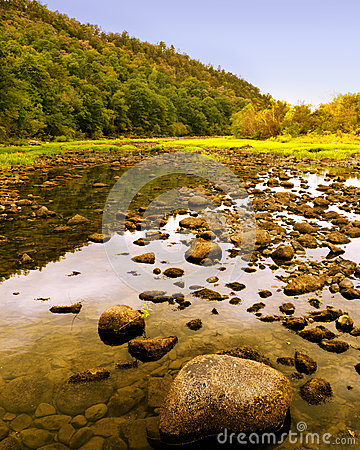 Free Summer Landscape Stock Photo - 29451380