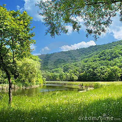 Free Summer Landscape Stock Images - 8622804