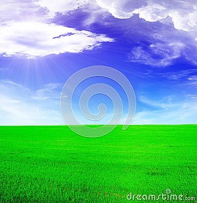 Summer landscape - blue sunny sky