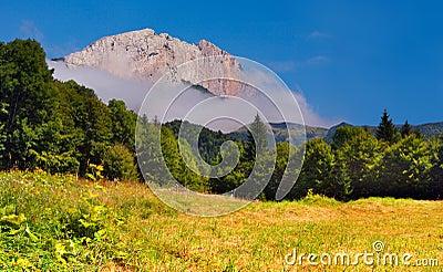 Summer landscape with huge rock
