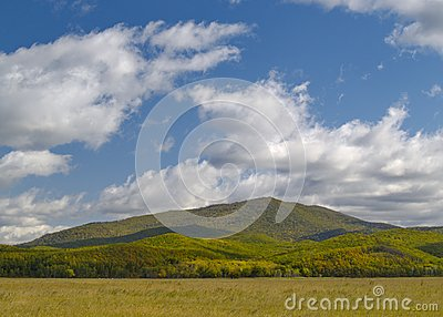 Summer landscape with mountain