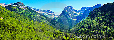 Summer landscape panorama, Glacier National Park