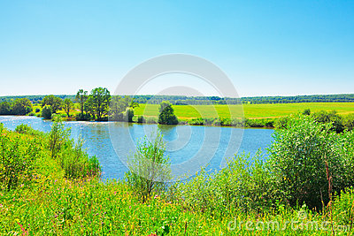 Summer landscape with pond
