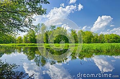 Summer landscape river clouds blue sky green trees pond