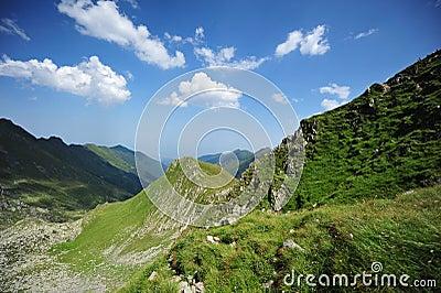 Summer landscape in the romanian Carpathians