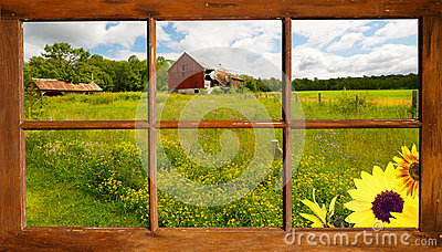 Summer landscape through a window.
