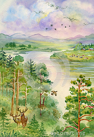 Free Summer Landscape With River, Pine, Trees And Deer Stock Photos - 31502633