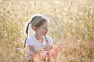 Summer in a meadow