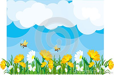Summer Meadow Royalty Free Stock Image - Image: 24744076
