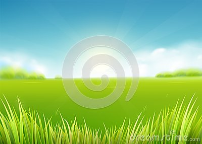 Summer meadow field. Nature background with sun, sunny rays, grass landscape Vector Illustration