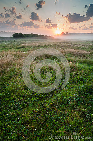 Free Summer Misty Dawn On The Meadow Royalty Free Stock Images - 52760039