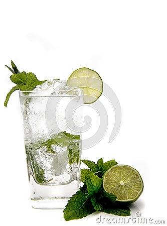 Free Summer Mojito Royalty Free Stock Photography - 835137