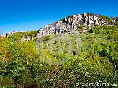 Summer mountain landscape in Crimea