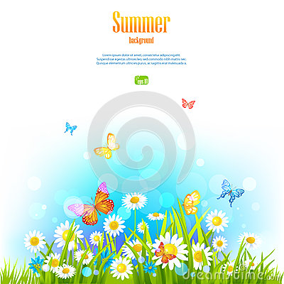 Summer positive floral background
