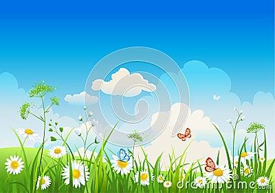 Summer positive  landscape
