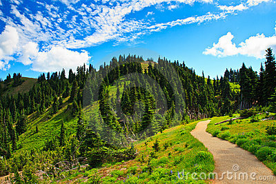 Summer scenery, Olympic National Park