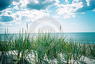 Summer sea. A view from the sandhill