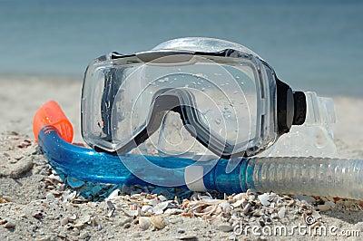 Summer sport - snorkeling
