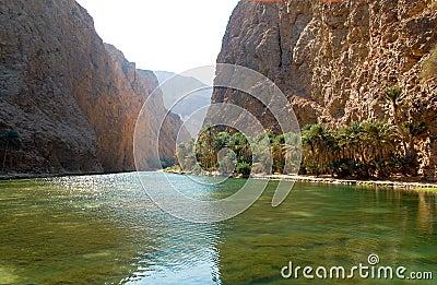 Summer sun on the mountain river