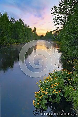 Free Summer Sunrise Stock Images - 4228234