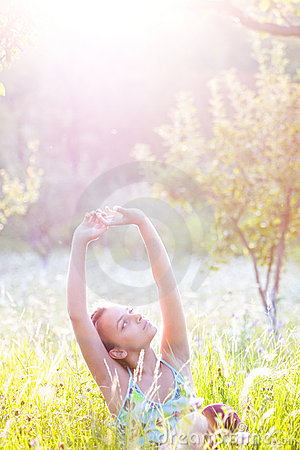 Free Summer Sunshine Stock Photo - 4065790