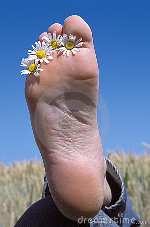 Daisy flowers between toes