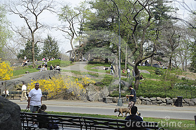 Summer time in central park Editorial Stock Image