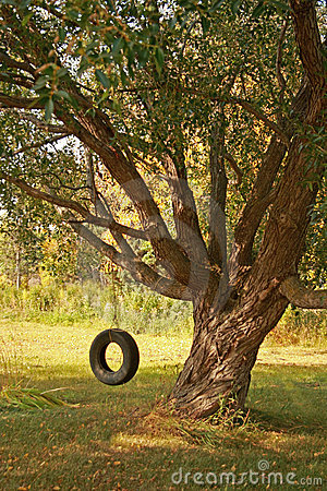 Summer Tire Swing