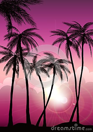 Free Summer Tropical Backgrounds Set With Palms, Sky And Sunset. Summer Placard Poster Flyer Invitation Card. Summertime. Stock Image - 116401601
