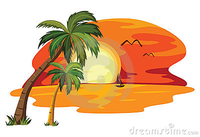 Summer tropical sunset