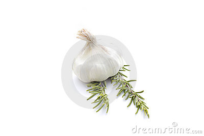 Summer vegetables  on white : garlic and rosemary