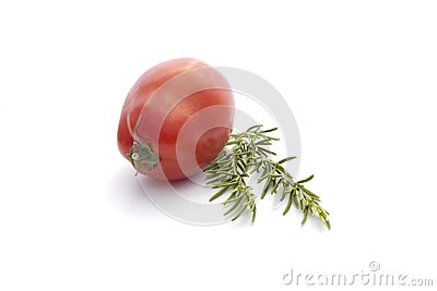 Summer vegetables  on white : tomato and rosemary