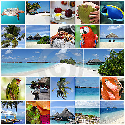 Free Summertime Collage. Royalty Free Stock Photography - 20763977