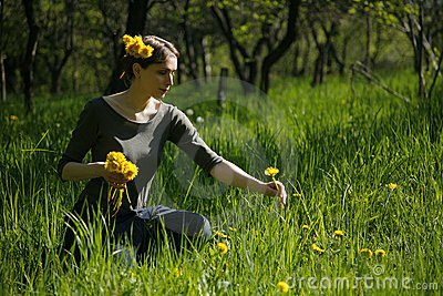 summertime meadow garden