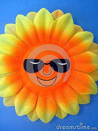 Free Sun Stock Photo - 19198120