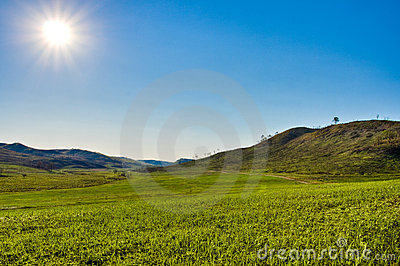 Sun above the green valley