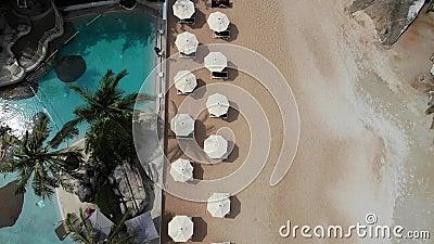 Sun-Betten auf Strand Vogelperspektive vieler zusammengepaßten Sonnenruhesessel mit Regenschirm auf einsamem Strand mit sauberem  stock video footage